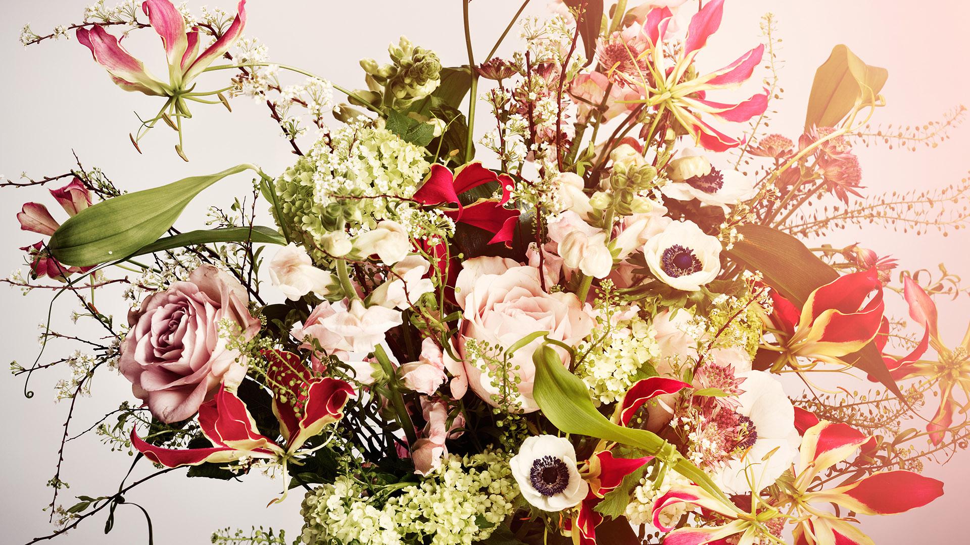 Power-of-flower1640_2